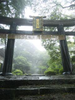 梅雨の銅鳥居